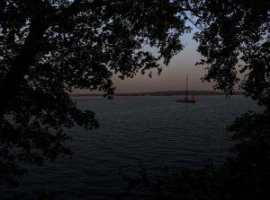 Rockland Harbor Through the Trees - PJ Walter Photography